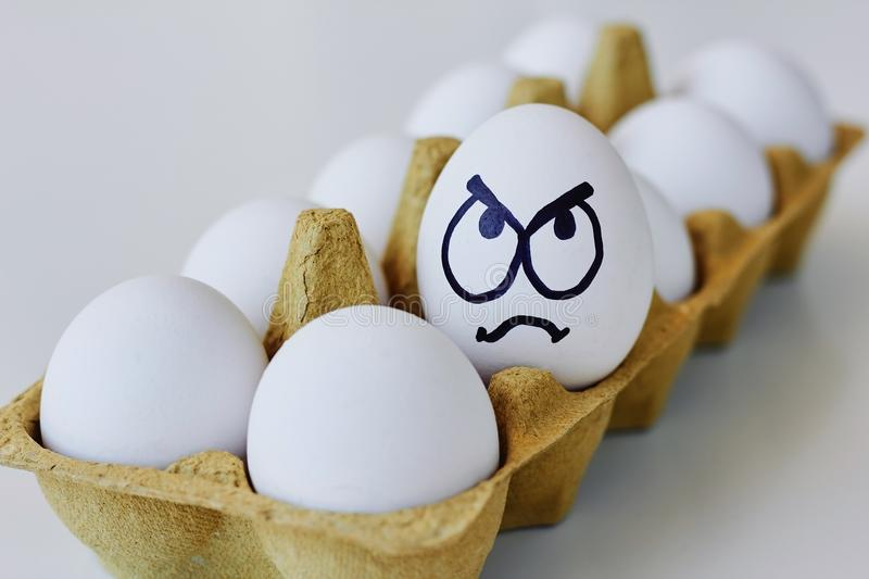 Angry egg in a carton box stock photo
