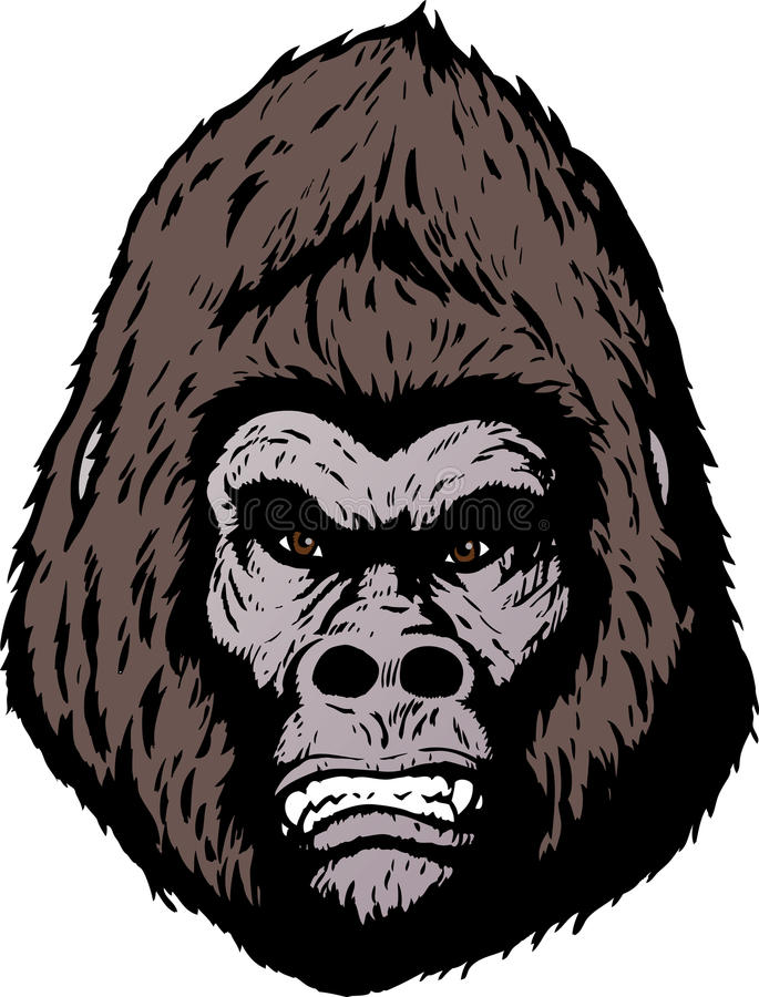 Angry gorilla face stock vector. Illustration of stern ... - photo#21