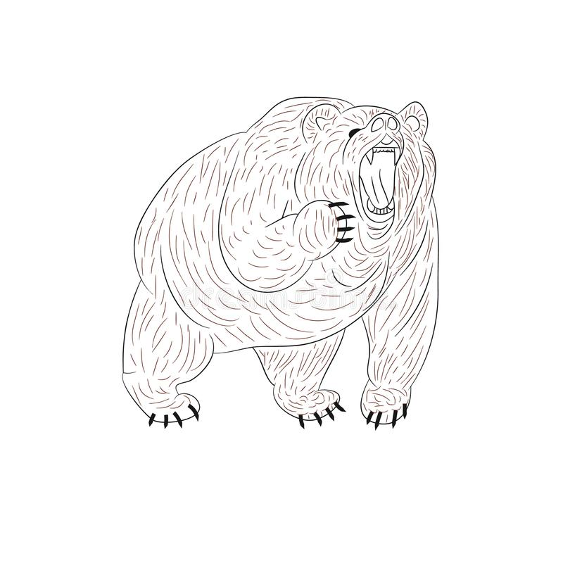 Angry grizzly bear growls, silhouette on white background. royalty free illustration