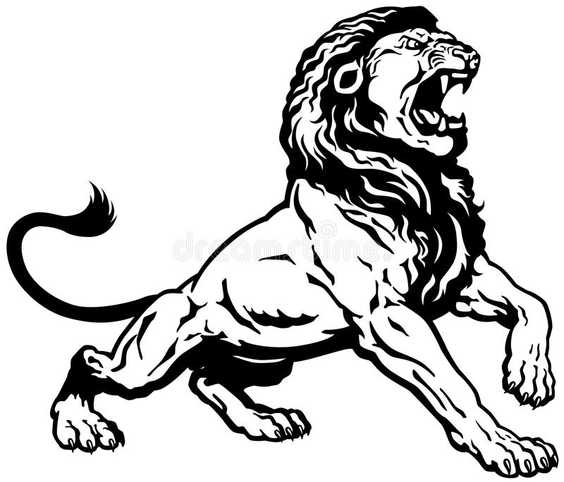 Angry lion stock vector illustration of creature male for Black and white lion tattoo