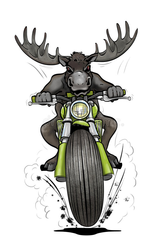 Moose-biker stock photography
