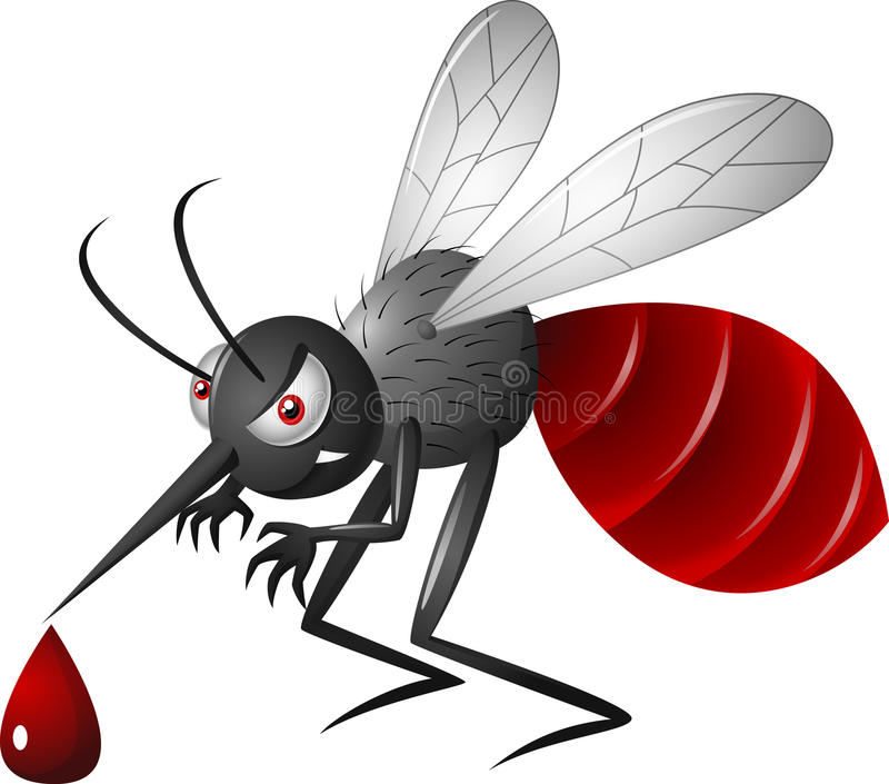 Angry mosquito cartoon on a white background stock vector