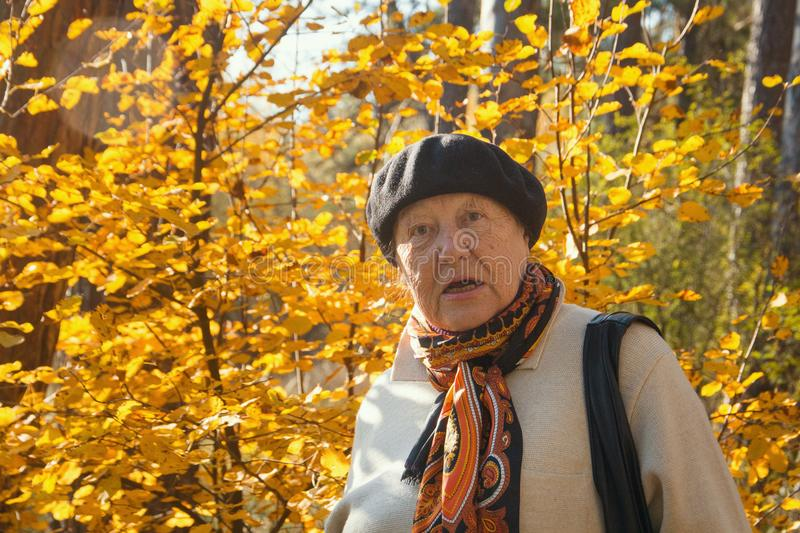 Angry old woman feels the outrage in autumn park. Portrait stock photography
