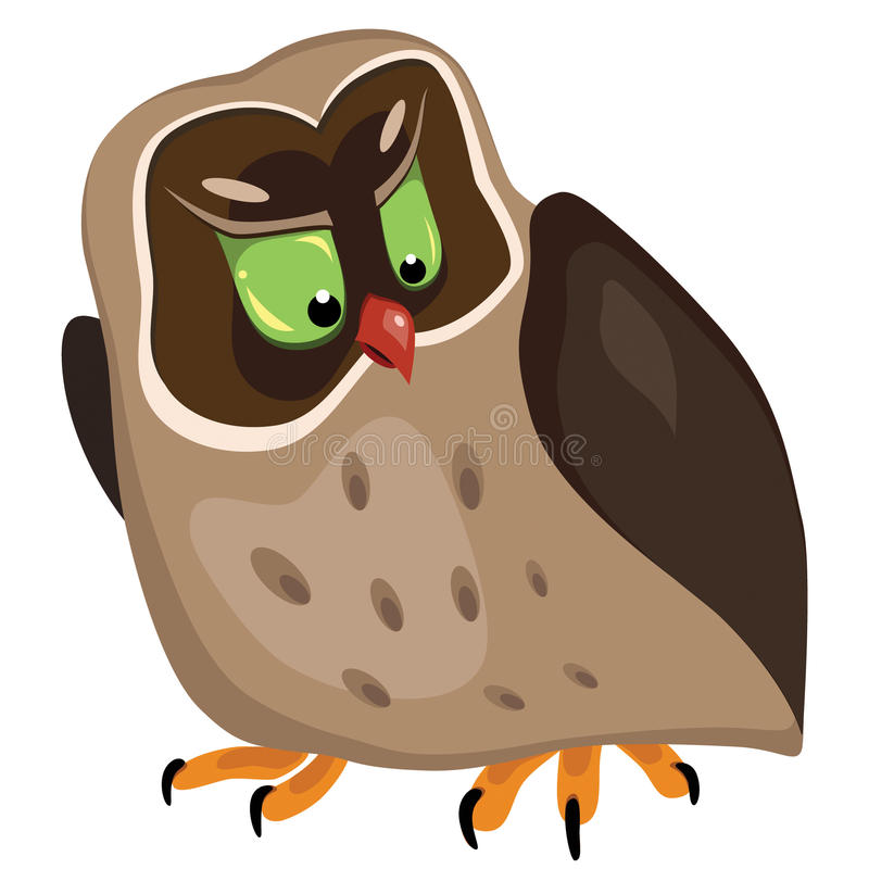 Download Angry owl stock vector. Image of angry, wing, cartoon - 17859046