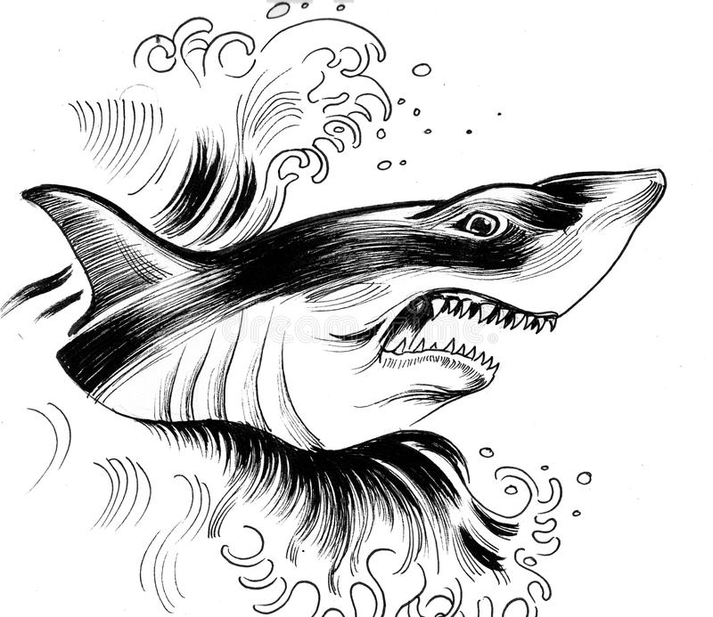 Angry shark royalty free illustration