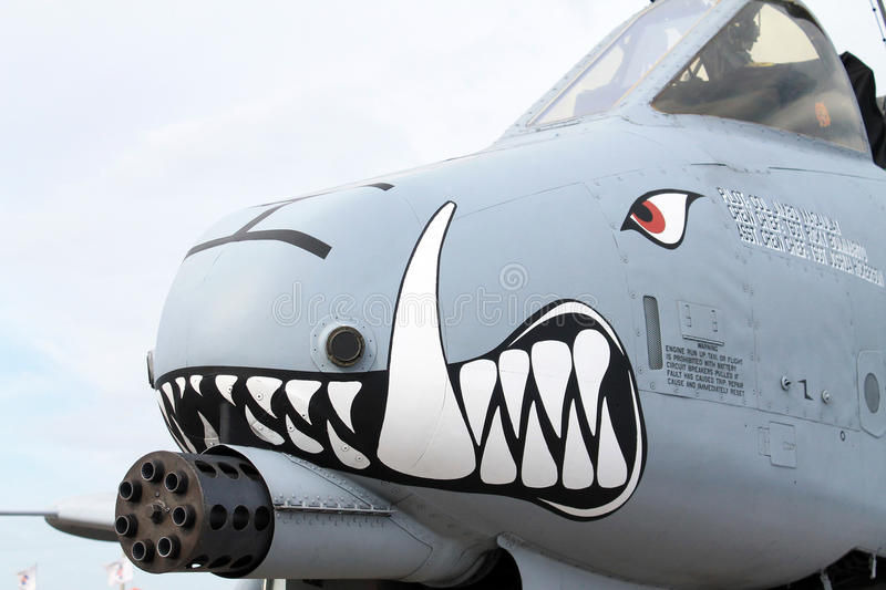 Angry thunderbolt. Close up cockpit. US Air Force fighter Thunderbolt airplane sporting painted on angry face. exhibition, outdoors, natural light. Homestead Air stock images