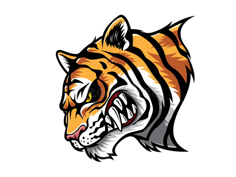 Angry Tiger Head royalty free illustration