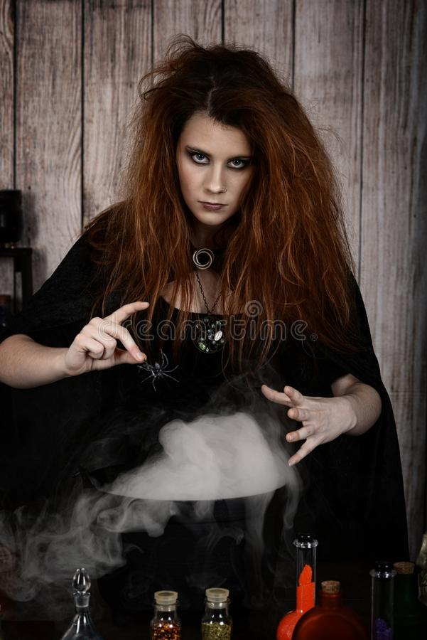 Angry witch making a magic potion an adding a spider stock photos