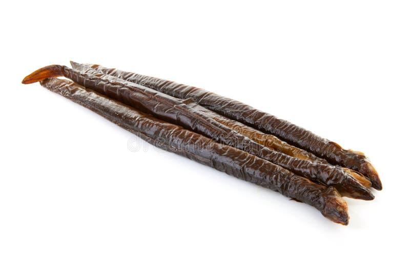 Anguila fumada foto de archivo libre de regalías