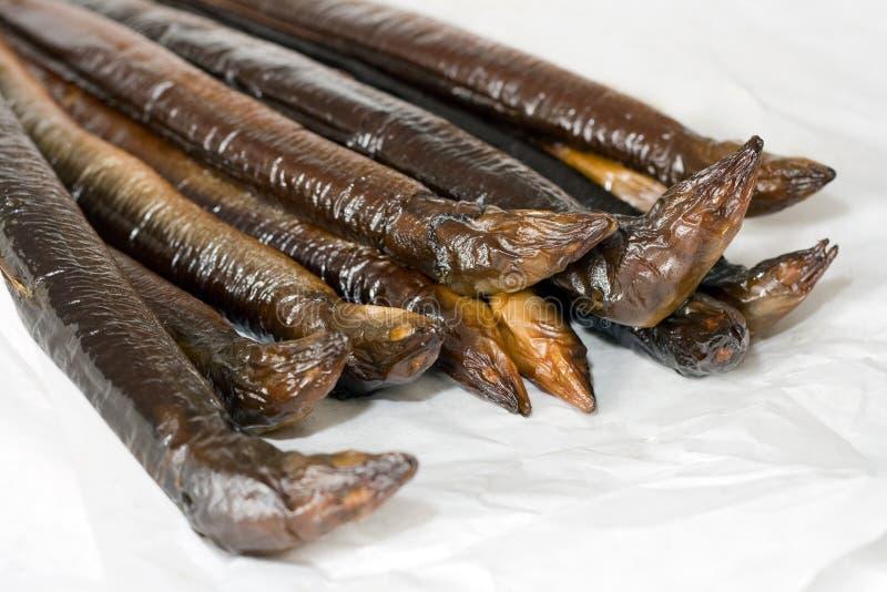 Anguila fumada fotos de archivo libres de regalías
