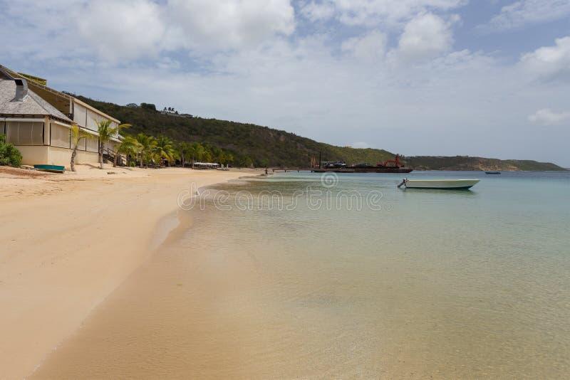 Download Anguilla stock photo. Image of beautiful, nature, coconut - 56116354