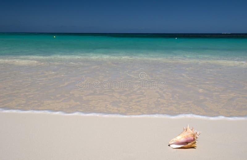 Anguilla, mar dei Caraibi immagini stock