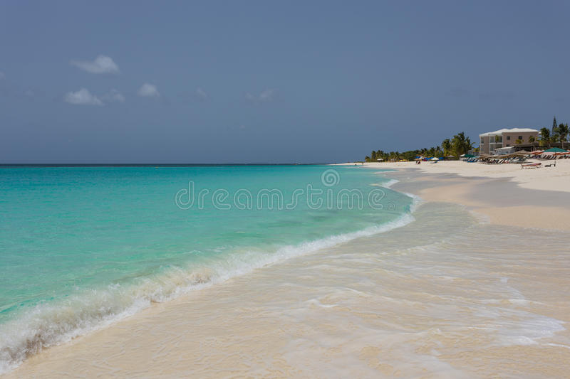 Download Anguilla stock photo. Image of blue, anguilla, nature - 56229838