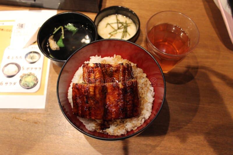 Anguille d'UNADON grillée au-dessus du riz photo libre de droits