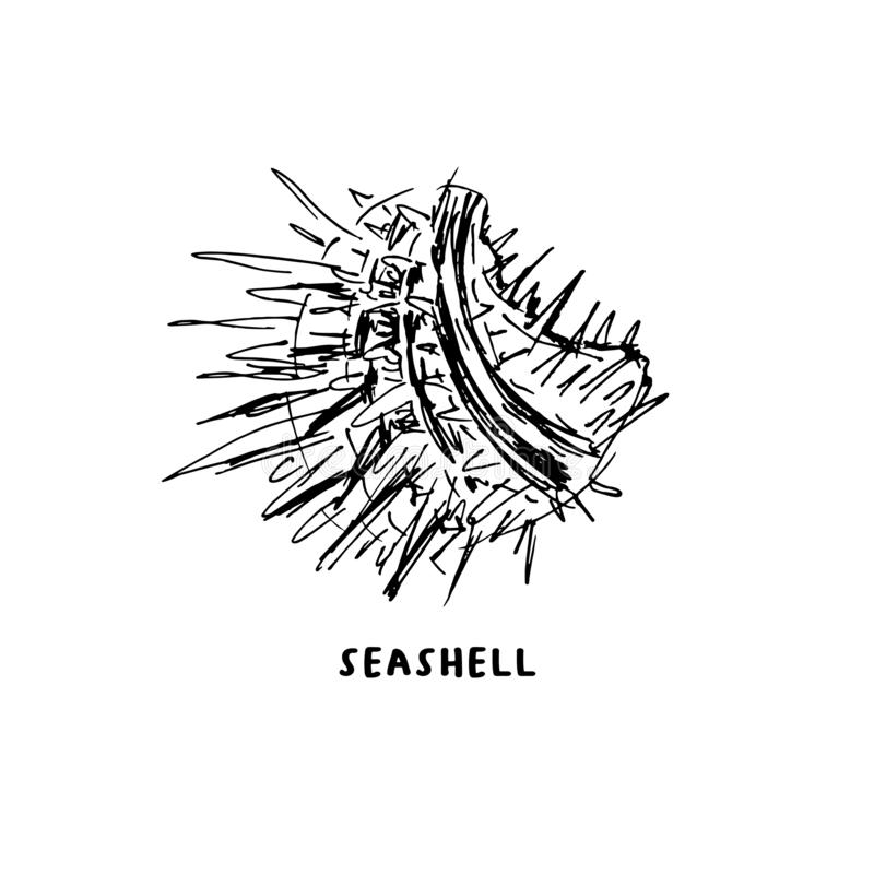 Angular murex conch hand drawn ink pen sketch. Angular murex seashell hand drawn vector logo with lettering. Seashore conch, mollusk monochrome sketch. Freehand stock illustration
