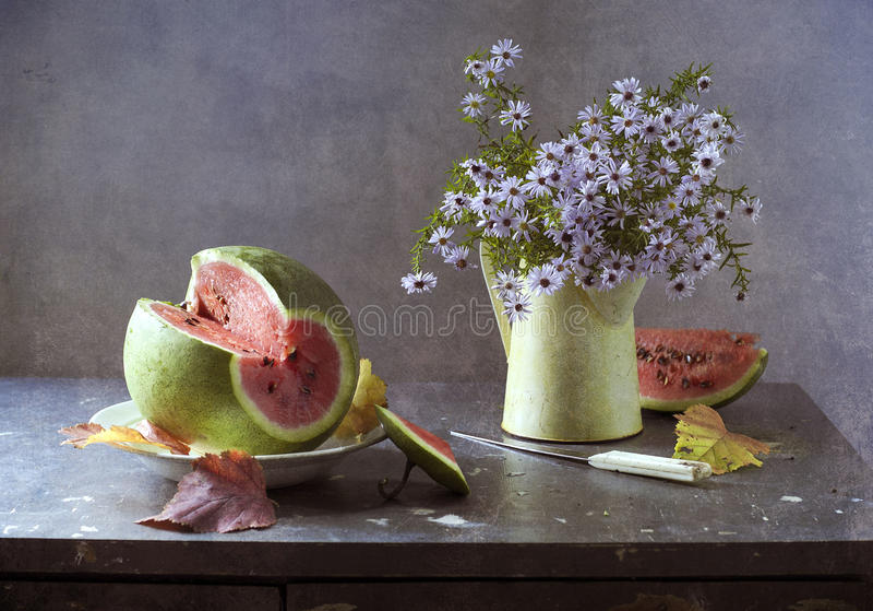 Anguria e butter-weed fotografie stock libere da diritti