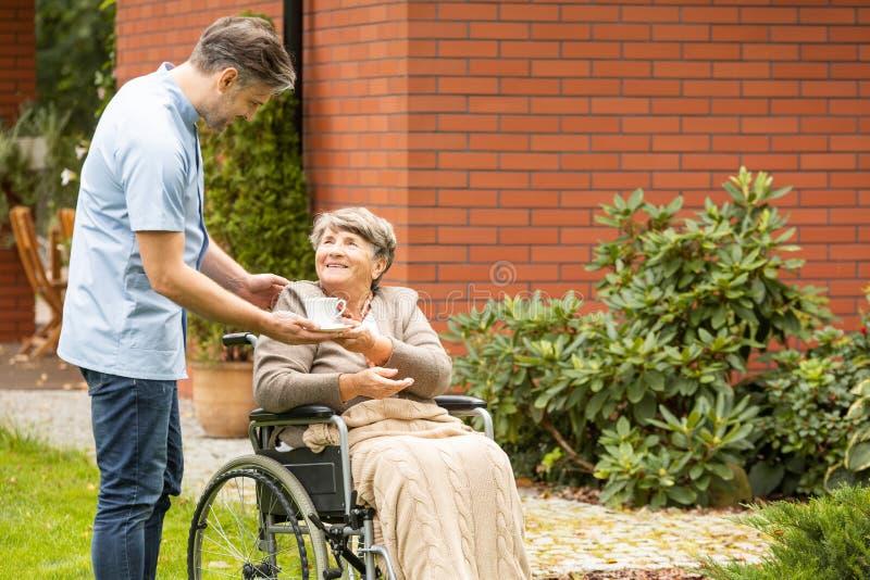 Anhörigvårdare som ger kopp te till den lyckliga lamma äldre kvinnan i rullstolen arkivbilder