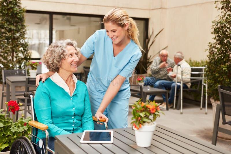 Anhörigvårdaren tar omsorg av kvinnan i rullstol royaltyfri foto