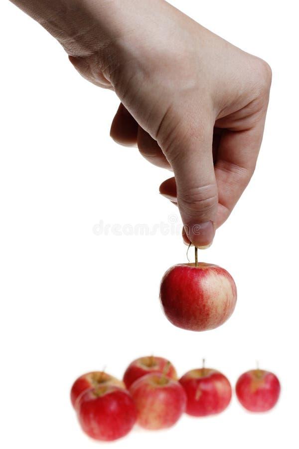 Anhalten eines kleinen roten Apfels stockbild