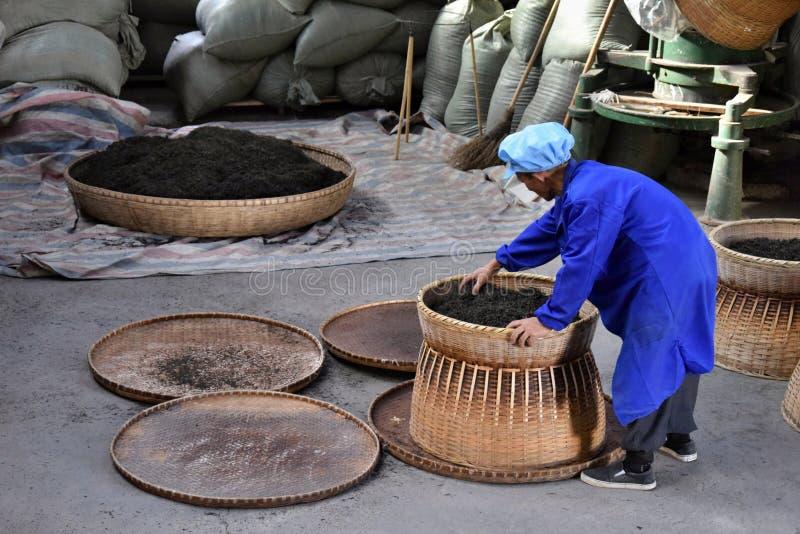 """ANHUI LANDSKAP, KINA †""""CIRCA OKTOBER 2017: En man som arbetar inom en tefabrik royaltyfri foto"""