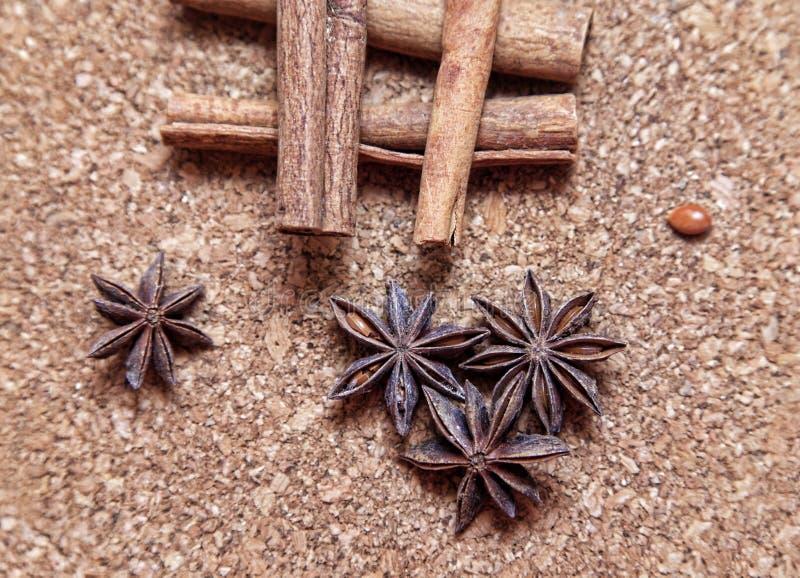 Anice and cinnamon royalty free stock photos