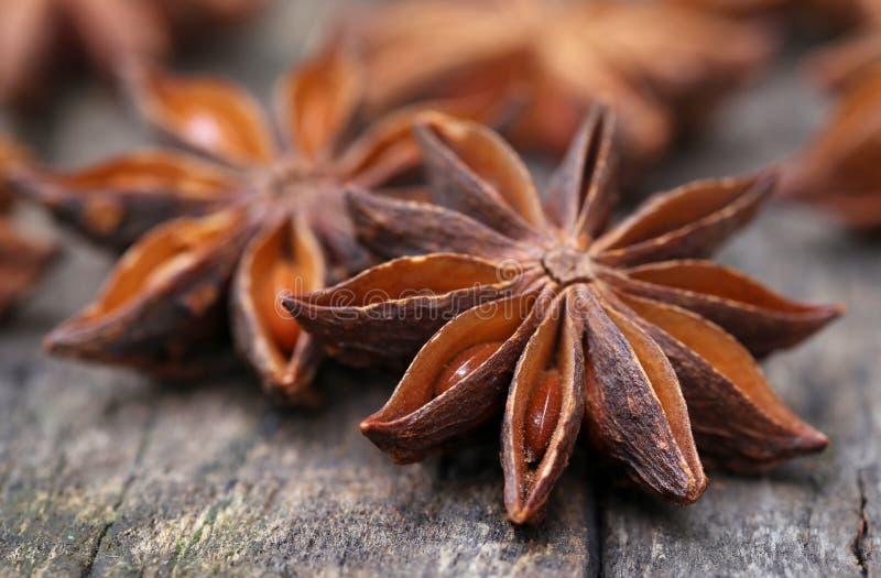 Anice stellato aromatico fotografie stock