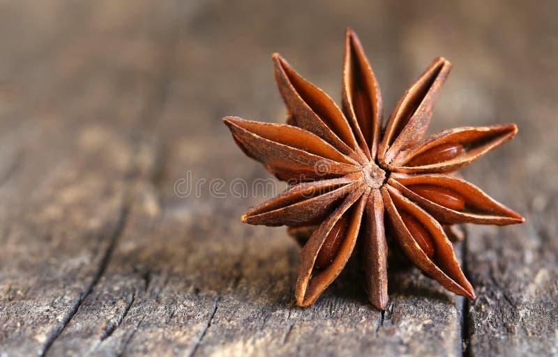 Anice stellato aromatico fotografia stock libera da diritti