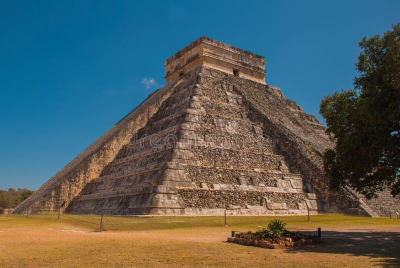 Anicent玛雅人玛雅金字塔El卡斯蒂略Kukulkan在奇琴伊察,墨西哥 库存图片