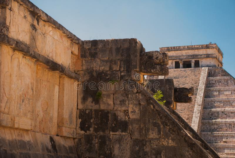 Anicent玛雅人玛雅金字塔El卡斯蒂略Kukulkan在奇琴伊察,墨西哥 免版税库存照片