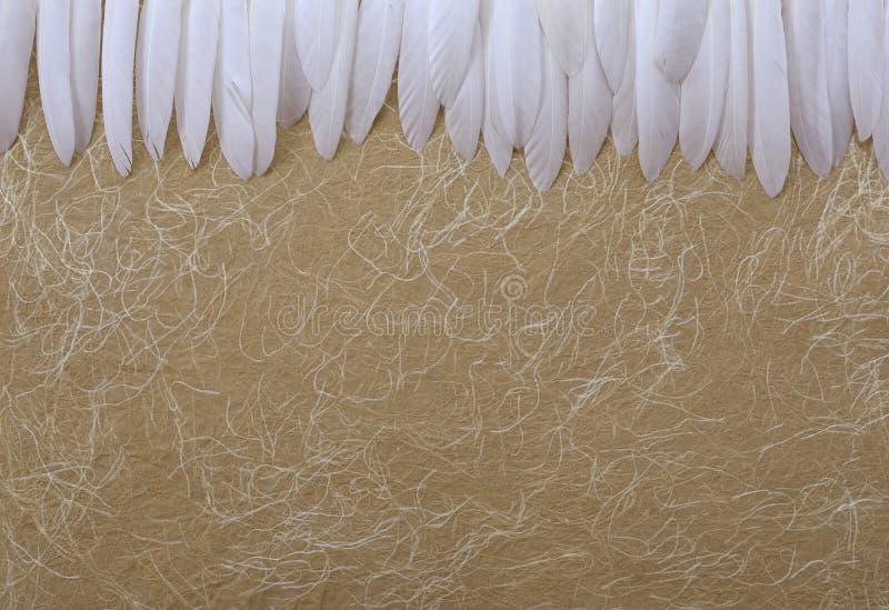 Anielski Białego piórka chodnikowa złota tło obrazy royalty free