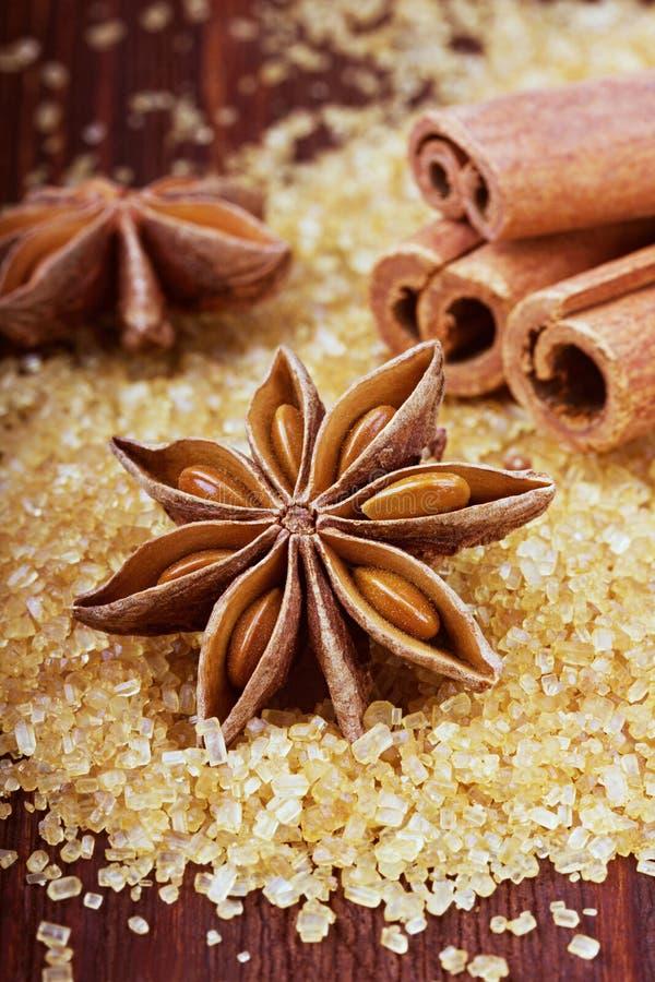 Anijsplantster en pijpjes kaneel op bruine rietsuiker royalty-vrije stock afbeeldingen