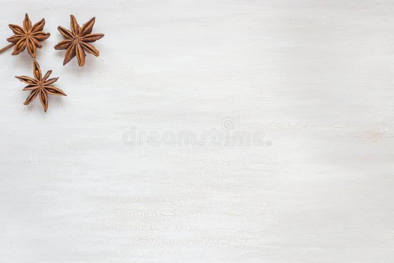 Anijsplantsterren op een lichte achtergrond De geurige anijsplant van de kruidenster Exemplaarruimte voor tekst royalty-vrije stock foto