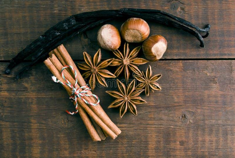 Anijsplantzaad, kaneel en vanille stock afbeelding