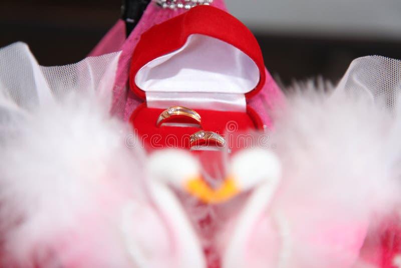 Anillo de bodas en la caja roja imagen de archivo libre de regalías