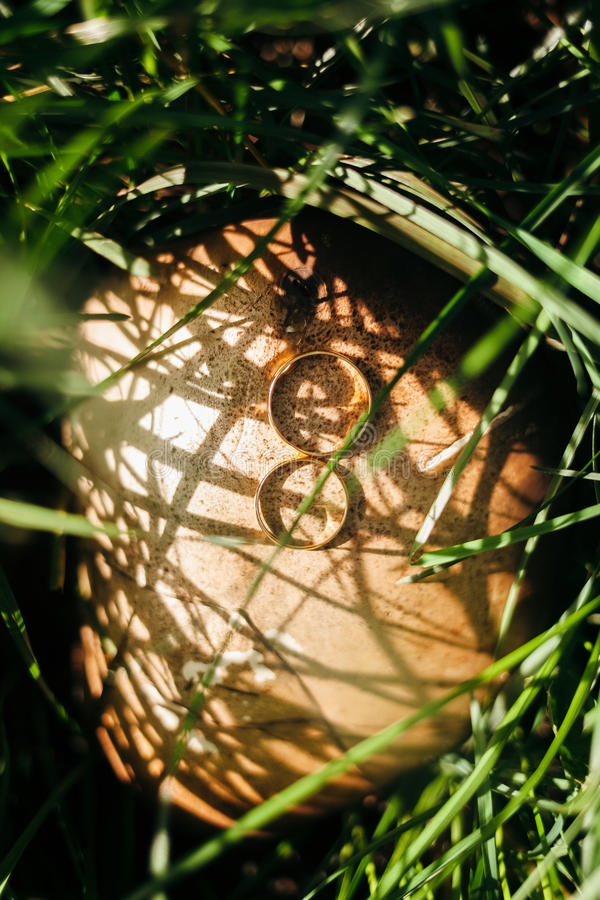 Anillo de bodas en setas fotografía de archivo libre de regalías
