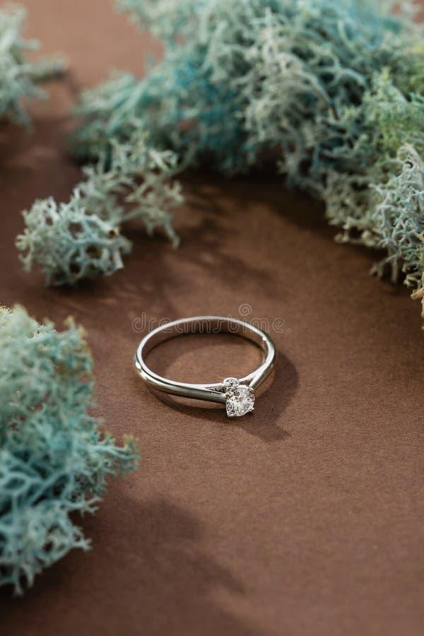 Anillo de compromiso del oro blanco con el diamante en fondo marrón con el musgo imagenes de archivo