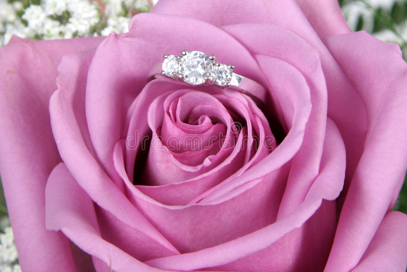 Anillo de compromiso en Rose rosada imagenes de archivo