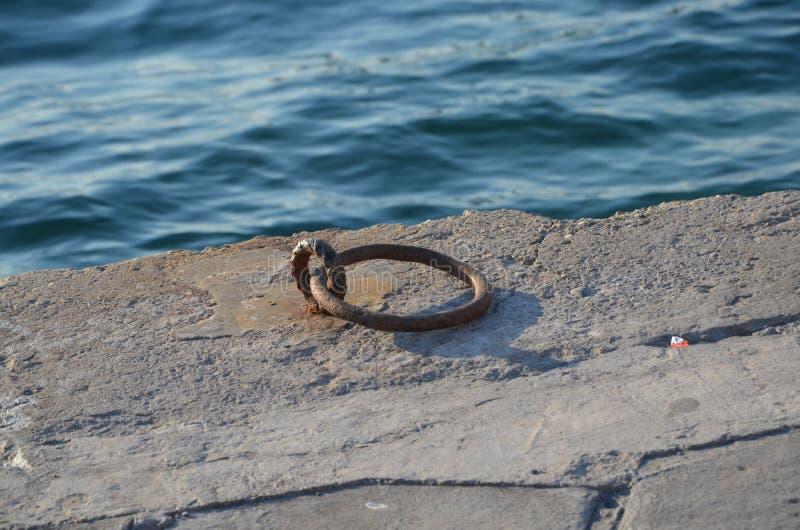 Anillo del barco imagen de archivo libre de regalías