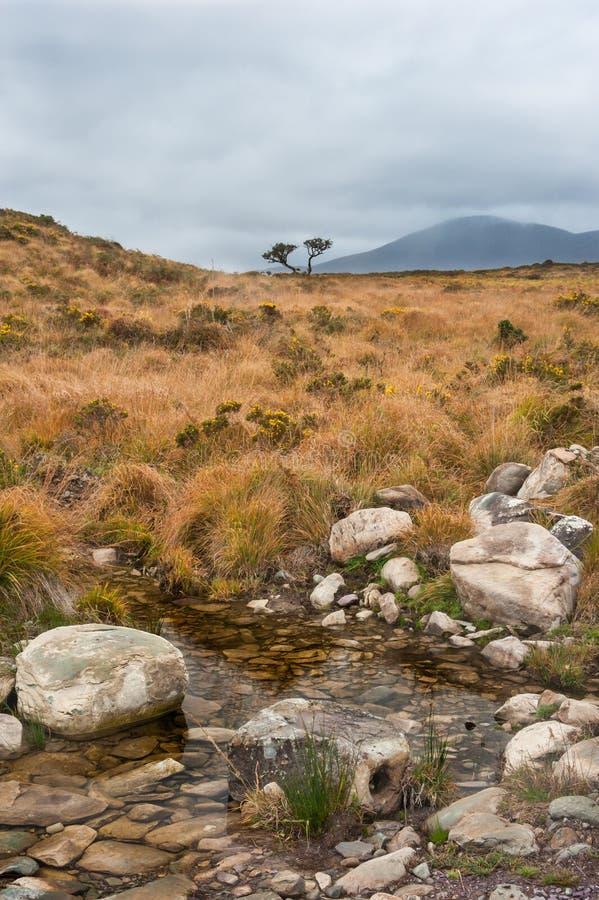 Anillo salvaje del paisaje de Kerry imagen de archivo libre de regalías