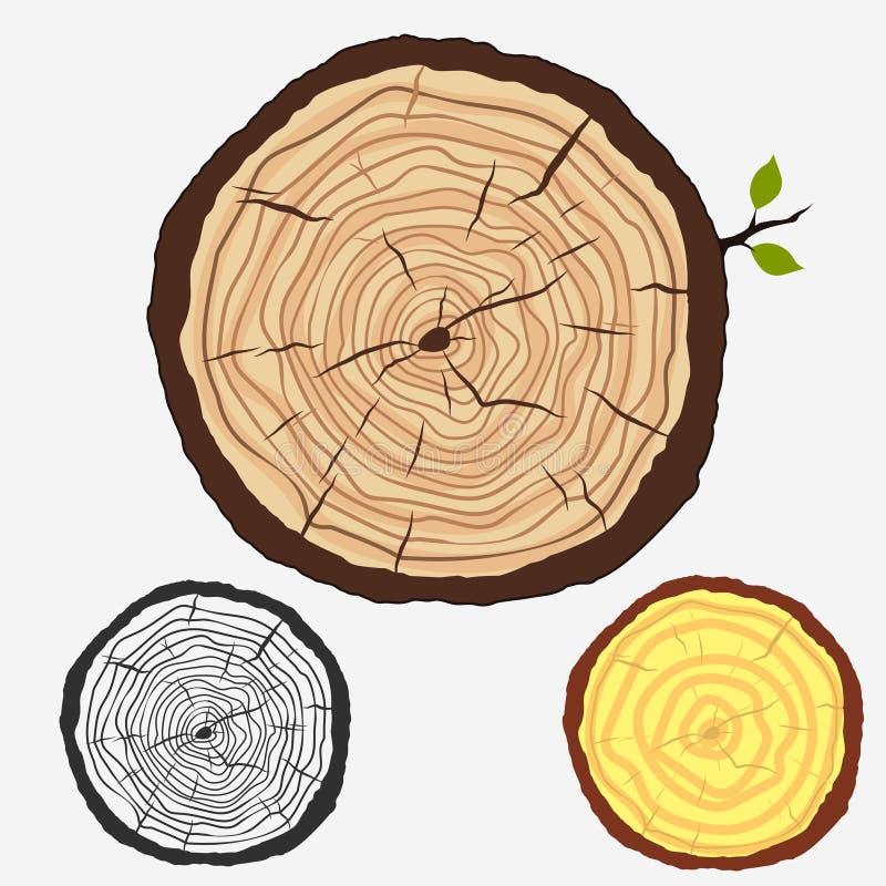 Anillos de árbol, tocón cortado con los árboles forestales Vector libre illustration