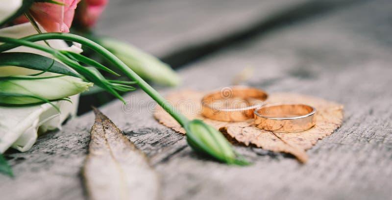 Anillos de bodas del oro en naranja, licencia de otoño fotografía de archivo
