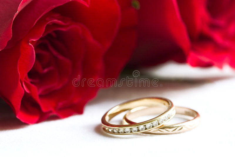 Anillos de bodas y rosas rojas fotos de archivo