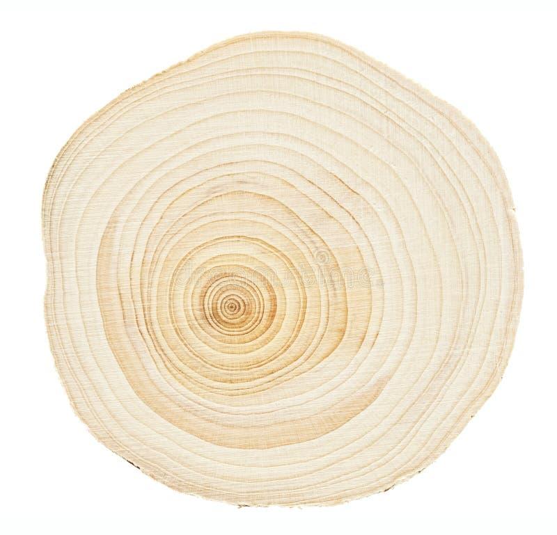 Anillos de madera imagen de archivo