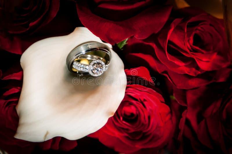Anillos de novia y del novio fotografía de archivo libre de regalías
