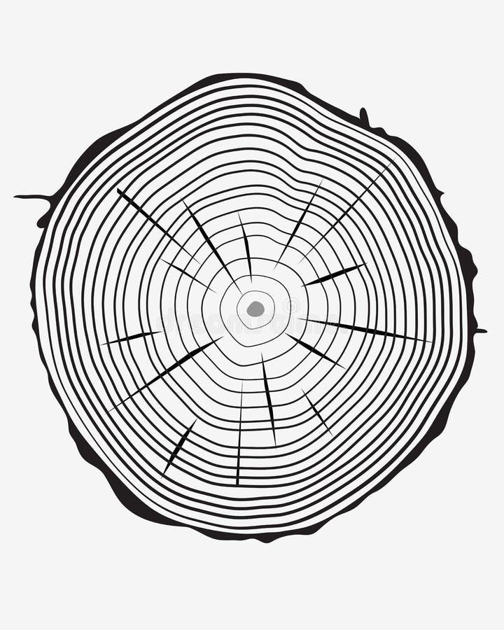 Anillos del tronco ilustración del vector