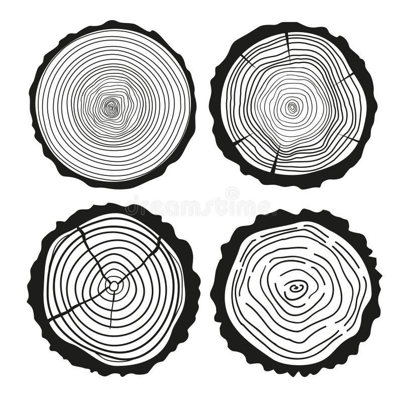 Anillos en un largo Sistema del corte transversal del árbol stock de ilustración