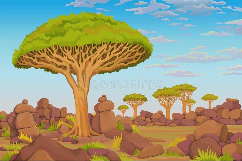 Animacja krajobraz: smok krwi drzewo, Afrykańska dolina chmurny niebo royalty ilustracja