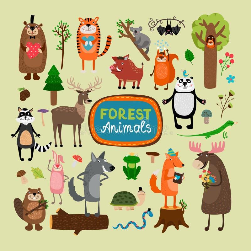 Animais da floresta do vetor ilustração do vetor
