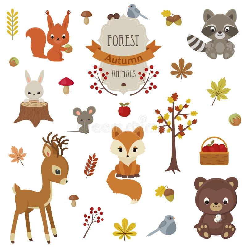 Animais da floresta no tempo do outono fotos de stock