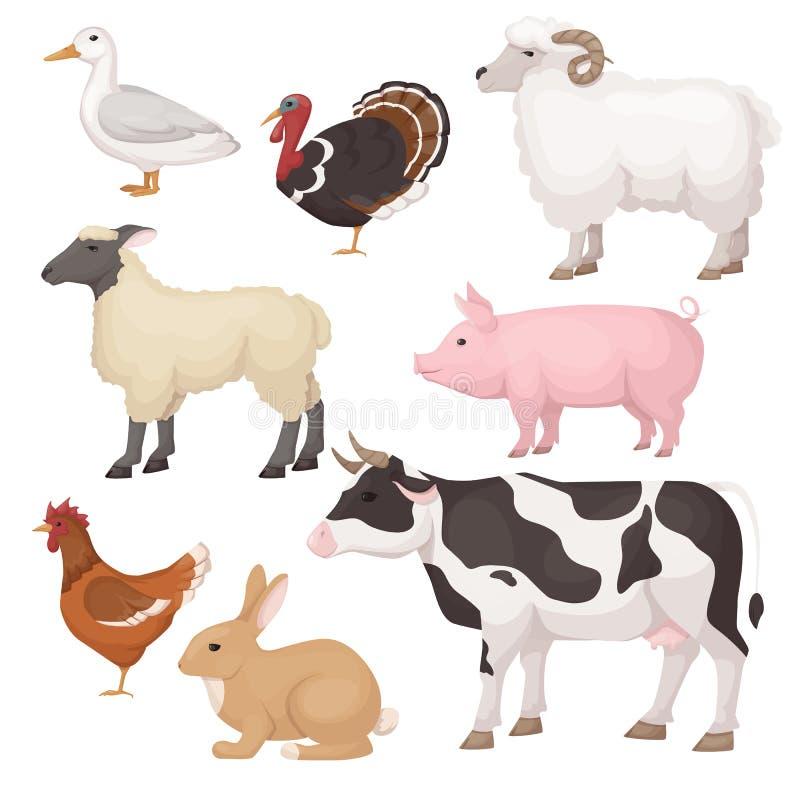 Animais de estimação bonitos, engraçados Grandes, animais médios O mercado do fazendeiro agrícola da carne ilustração stock